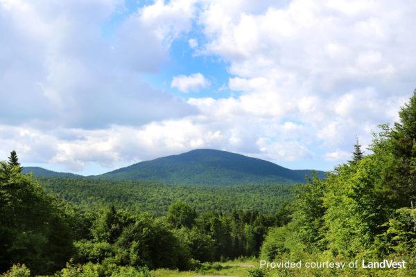 Pickett Mountain