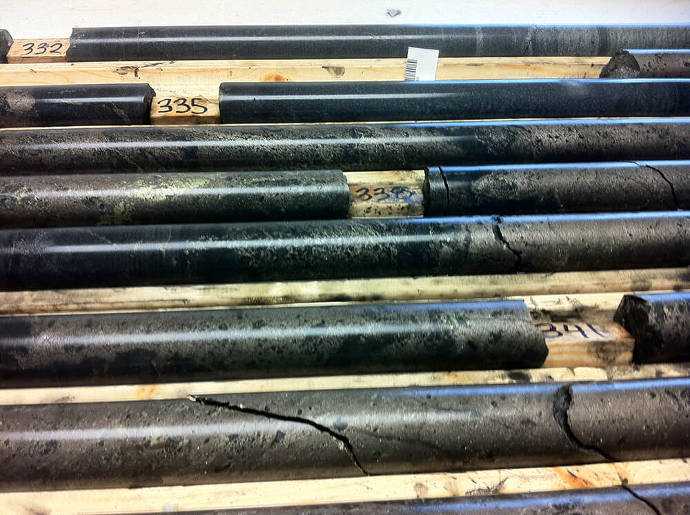 Rice Island core samples
